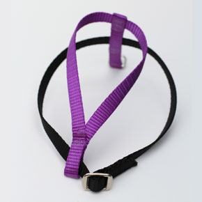 Purple Harness