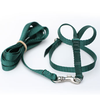 Green Harness